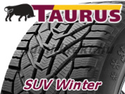 Taurus SUV Winter